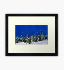 Snow! Framed Print