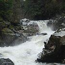 Granite Falls Waterfall In Fall by Edith Farrell