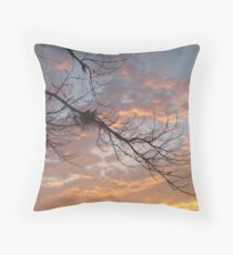 FEBRUARY:  GUM TREE BRANCH AT SUNSET Throw Pillow