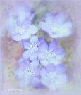 Spring dream by aMOONy