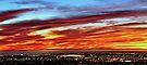 Twinkle Twinkle City Lights by Helen Vercoe