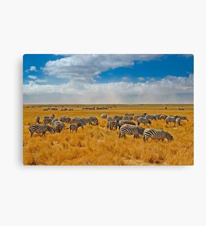 Ngorongoro Crater Canvas Print