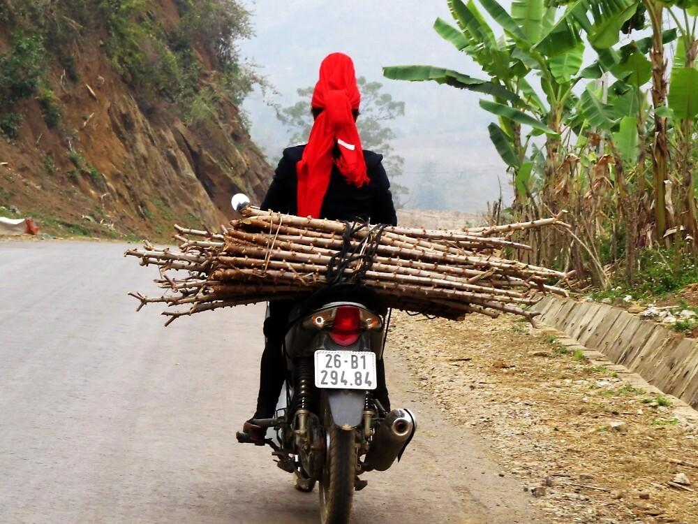 Vietnamese lady biker by chaosteam