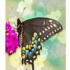 Harmony of the Butterfly by JanDeA