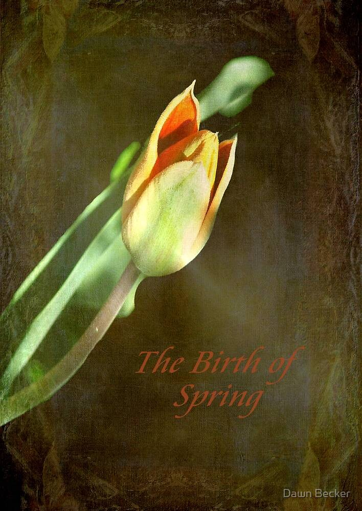 A New Spring © by Dawn Becker