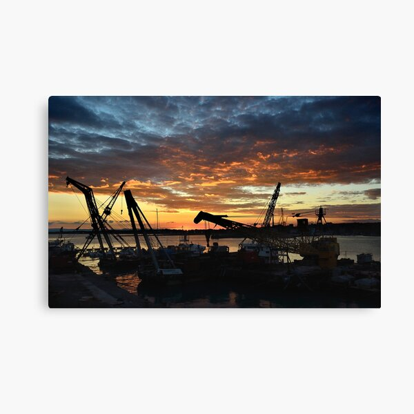 Gru al porto Canvas Print