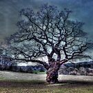 Tree O' Life by Joe Freemantle