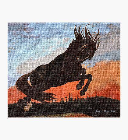 Leaping Black Stallion Photographic Print