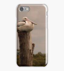 Pelican Rest iPhone Case/Skin