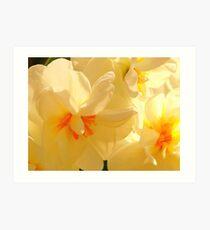 Vanilla Spring Art Print