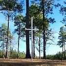 A Rural Roadside Cross in Georgia by Deborah Lazarus