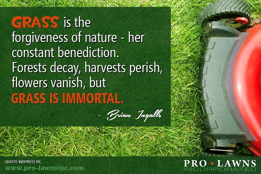A Quotography on Lawn Maintenance by Pro-Lawns, Inc