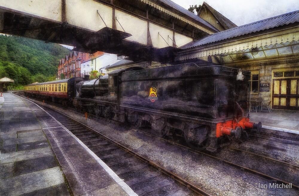 Steam Train Ride by Ian Mitchell
