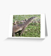 Dragon with forked tongue. Greeting Card