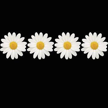 daisies by GeorgiaMae14