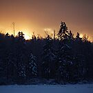 Winter Sunset by pmreed