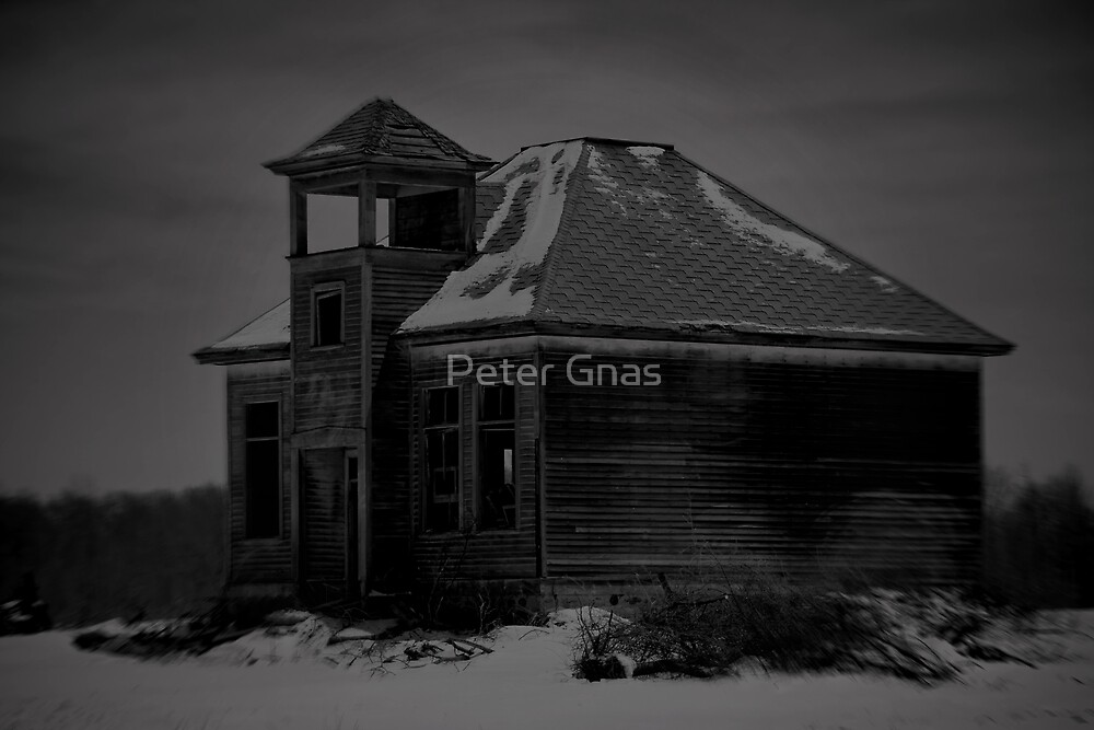 Once upon a School by Peter Gnas