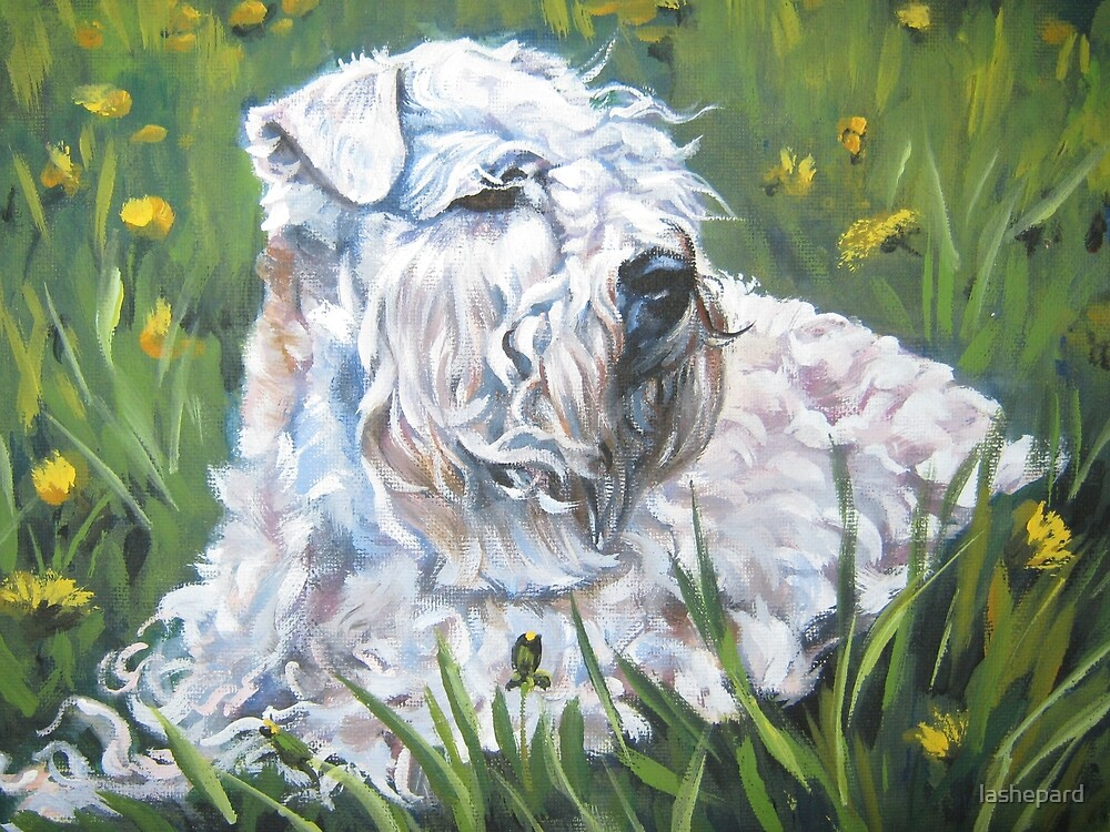 Soft-coated Wheaten Terrier Fine Art Painting by lashepard