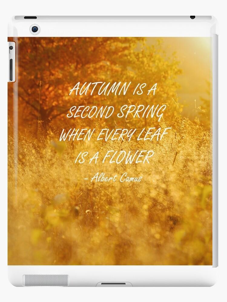 Autumn is a second spring by Karol Majewski