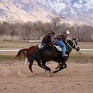Quarter Horse Workout by Raider6569