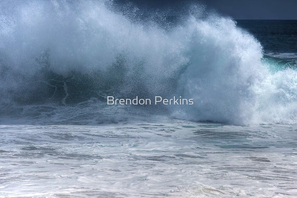 Crashing Wave (The Wedge, Newport Beach, California) by Brendon Perkins
