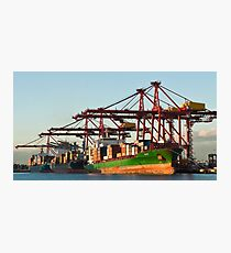 0951 Container Terminal Melbourne Photographic Print