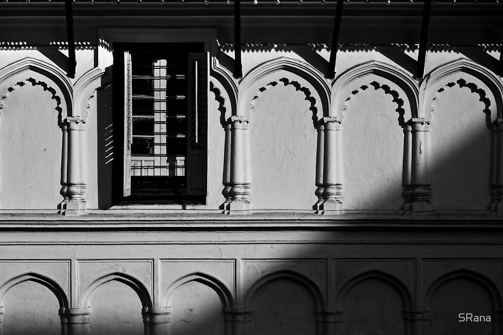 creeping shadows by SRana