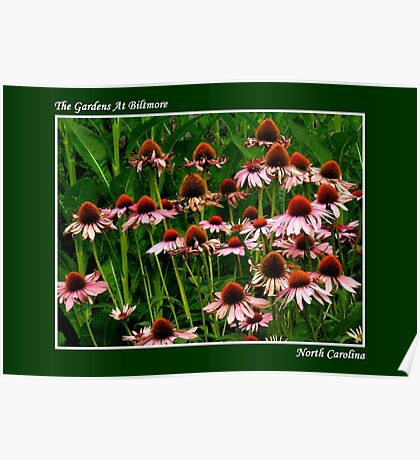 The Gardens At Biltmore ~ Part Six Poster