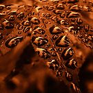 Copper Droplets by Kelly Chiara