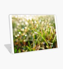Dewdrop Morning Laptop Skin