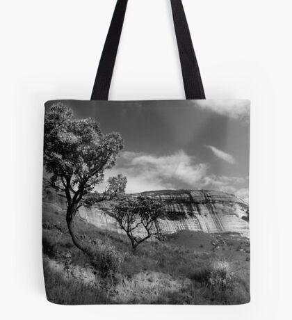 Sandstone Cliffs, Golden Gate, South Africa Tote Bag