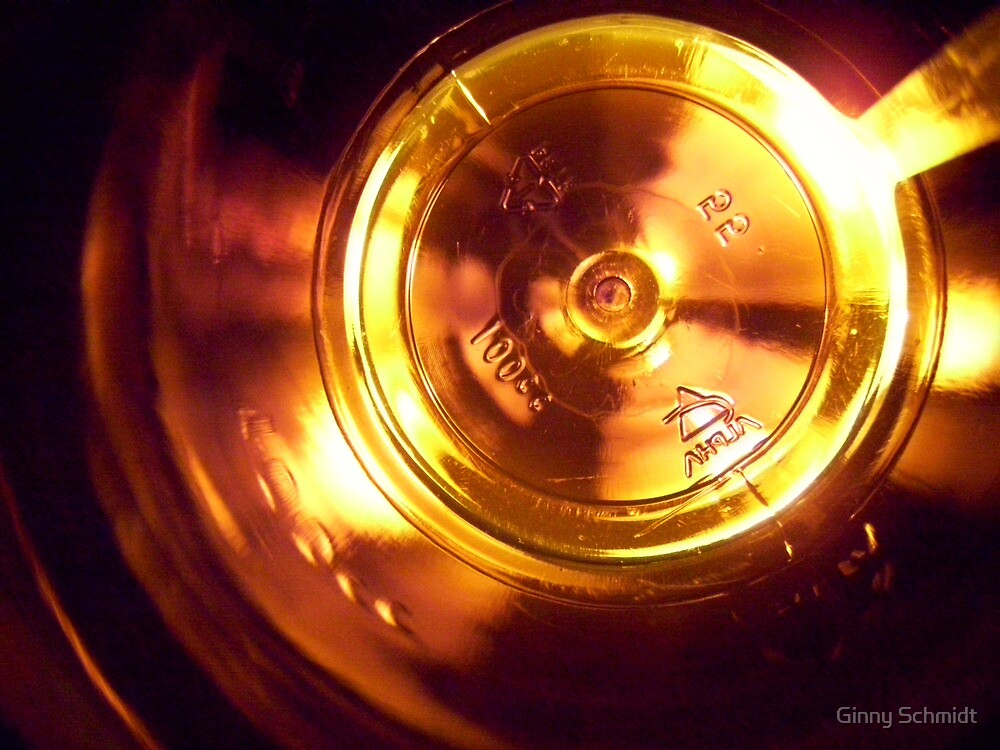 View from Inside a Bottle by Ginny Schmidt