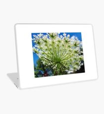 Queen Anne's Lace Laptop Skin