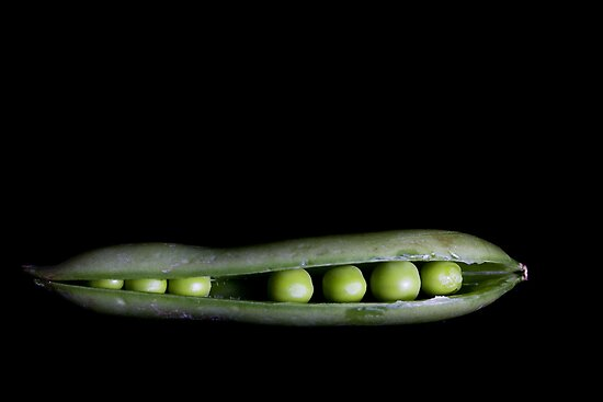 Peas In A Pod by Lynne Morris