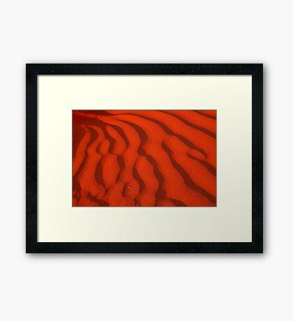 A Simpson Desert Red Sunset Framed Print
