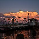 Pollies Promise........................... by Dave  Hartley
