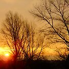 Just another sunrise by Themis