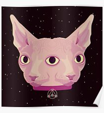 Two-Faced Sphynx From Outer Space Poster