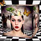 Fantasy Boxed by Kym Howard