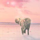 Sunset Elephant  by MarleyArt123