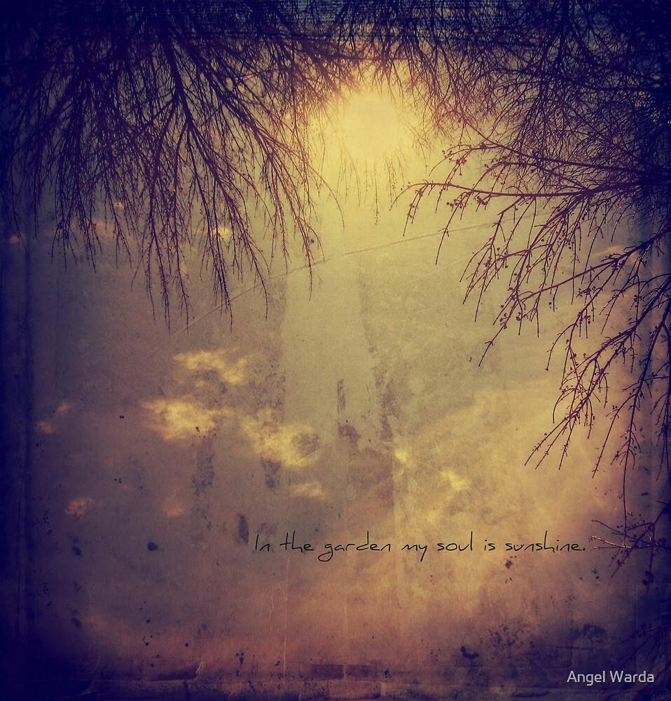 In the garden my soul is sunshine. by Angel Warda