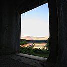 the window by Jason Platt