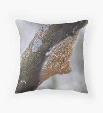 Basidioradulum Radula Throw Pillow