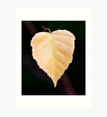 Autumns Song II Art Print
