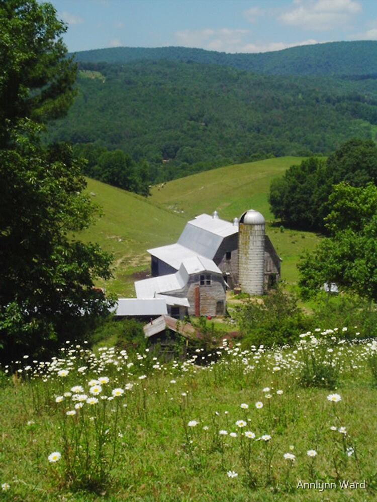 Rush Branch Barn by Annlynn Ward