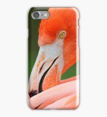 Fabulous Flamingo iPhone Case/Skin