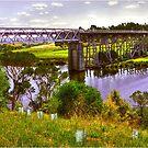 Nicholson River Tressle Bridge by Jennifer Craker