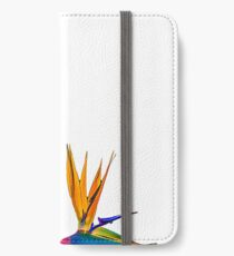 Bird of Paradise Flower (colour paint) iPhone Wallet/Case/Skin