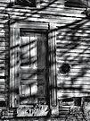 Moonlit Entry by Marcia Rubin