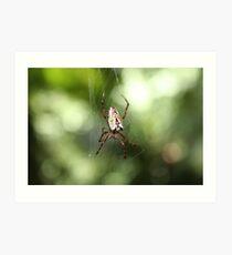 """""""Itsy Bitsy Spider"""" Art Print"""